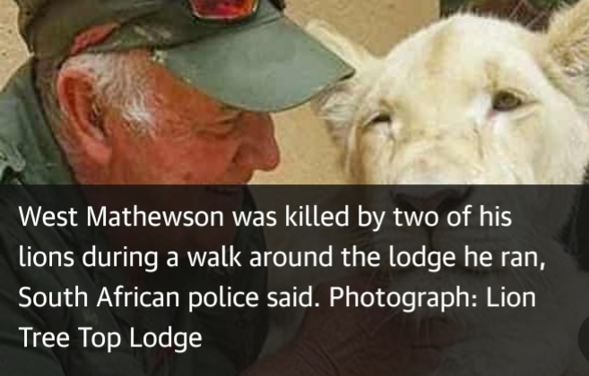 """Killed by two of his lions he reared. """"West Mathewson""""."""
