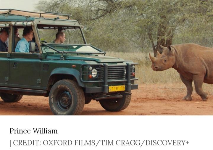 Prince William in the wildlife
